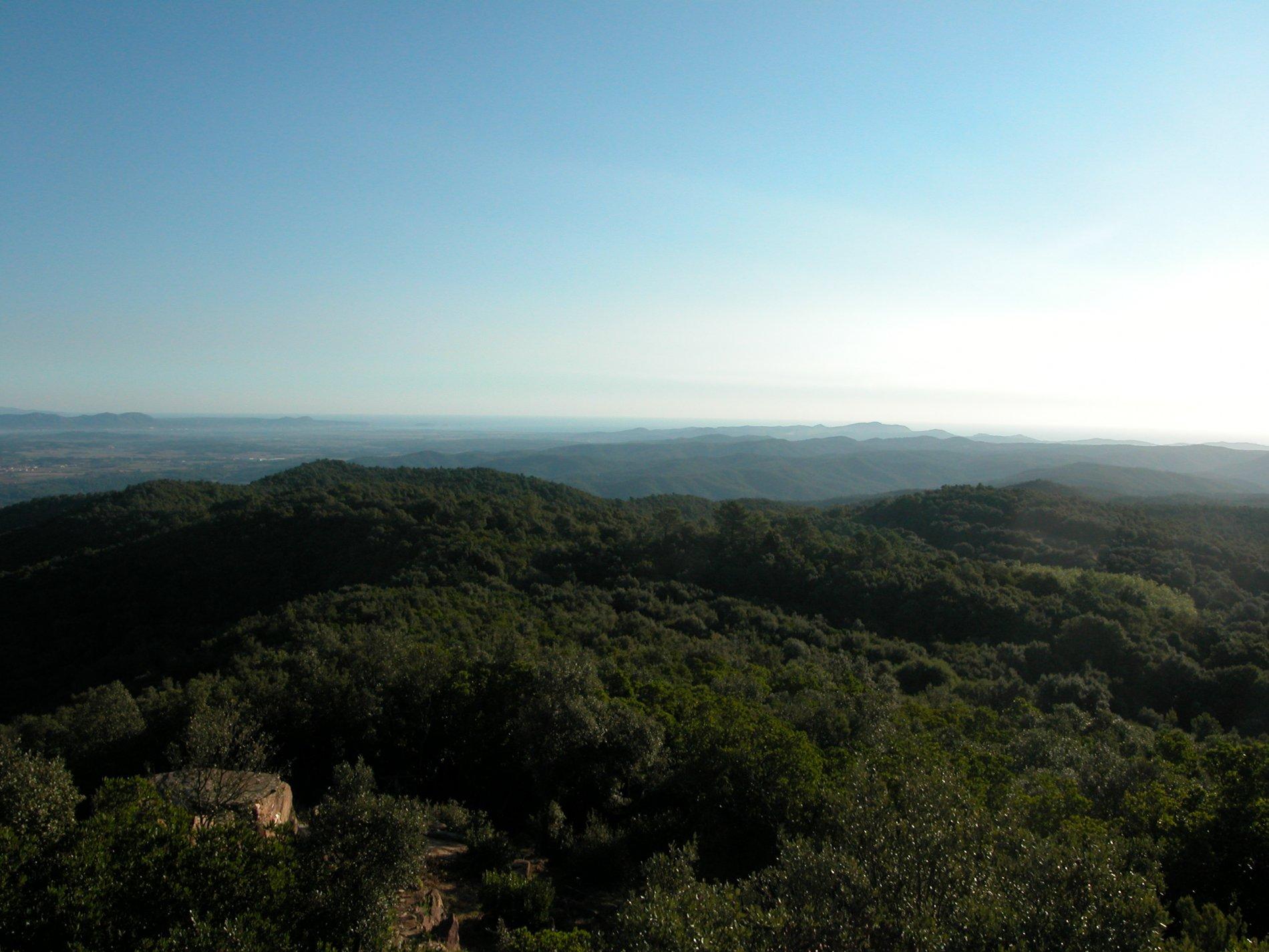 El Puig d'Arques és un dels cims més alts de les Gavarres i, per tant, ofereix unes vistes espectaculrs. Des de d'alt de la torre de guaita es pot veure com les Gavarres arriben a la plana. A la part inferior de la imatge veiem el dolmen del Puig d'Arques, avui dia restaurat.