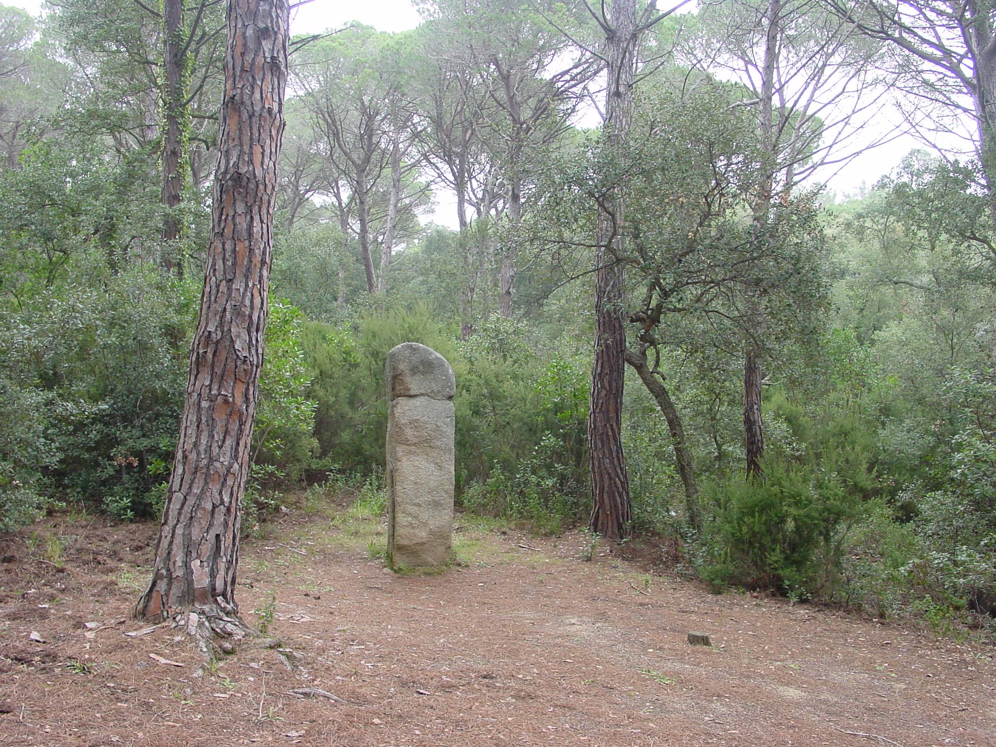 La imatge del Menhir de la Murtra no denota la seva imponéncia. Aquesta pedra dreta mesura 2'35 cm d'alçada, 0'70 cm estan enterrats. Es de tipus fal·liforme i de secció quadrada. No es sap si tindrien una funció de delimitació territorial o formarien part d'algun ritual. Aquest exemplar es troba molt aprop del dolmen de la Cova d'en Daina.