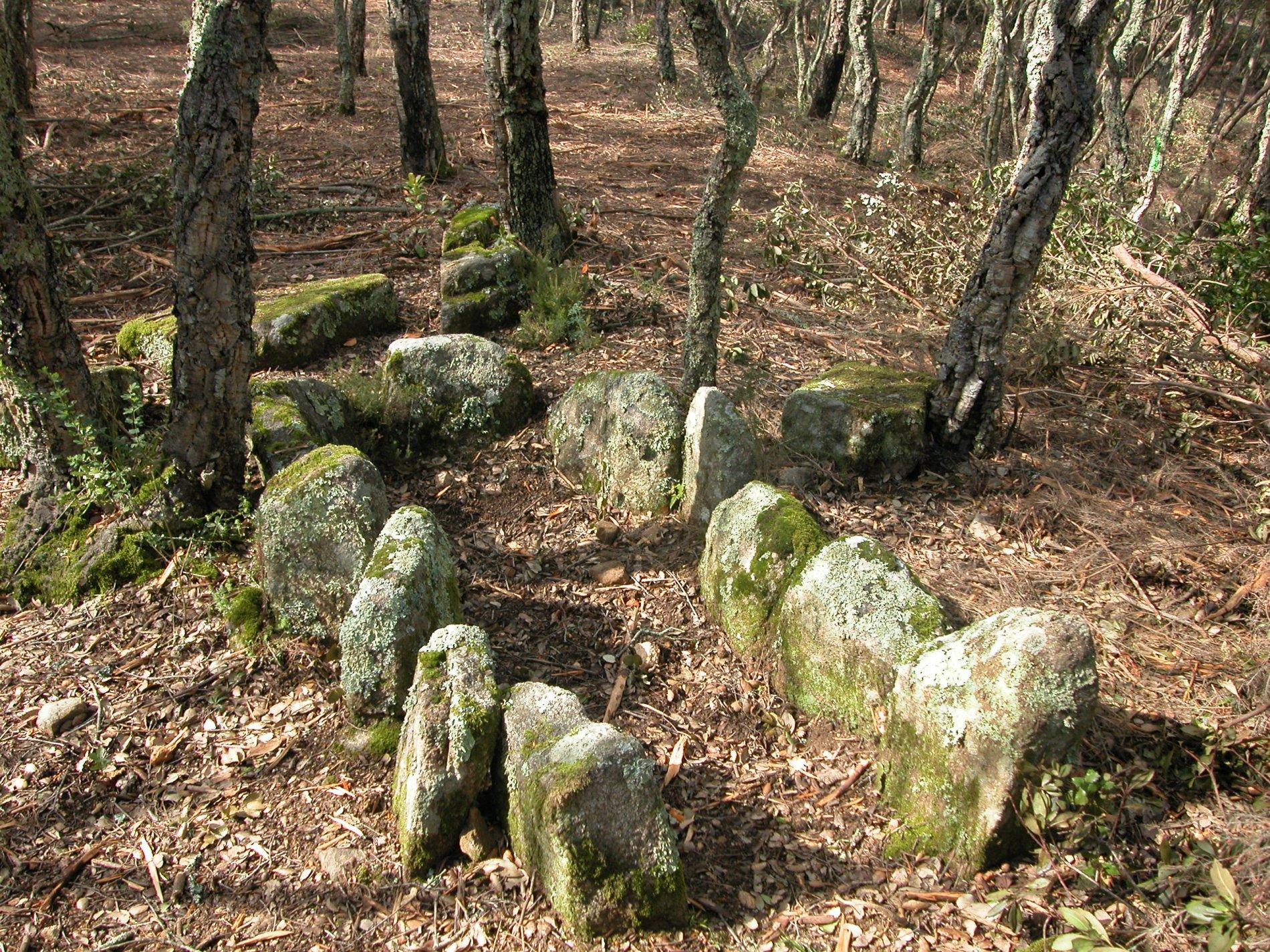 Les cistes eren monuments megalítics anteriors als dolmens i eren tombes individuals o de dos individus enterrats al mateix moment. Son caixes de pedres que un cop es tancaven no es tornaven a utilitzar. La de la imatge està molt ben conservada, te onze lloses in situ i tres que es troben un xic desplaçades de la seva ubicació original. La cista es troba enmig d'una sureda al costat de la carretera que puja de Calonge a Romanyà. Aquest últim nucli de població és un dels grans focus en megalitisme a les Gavarres.