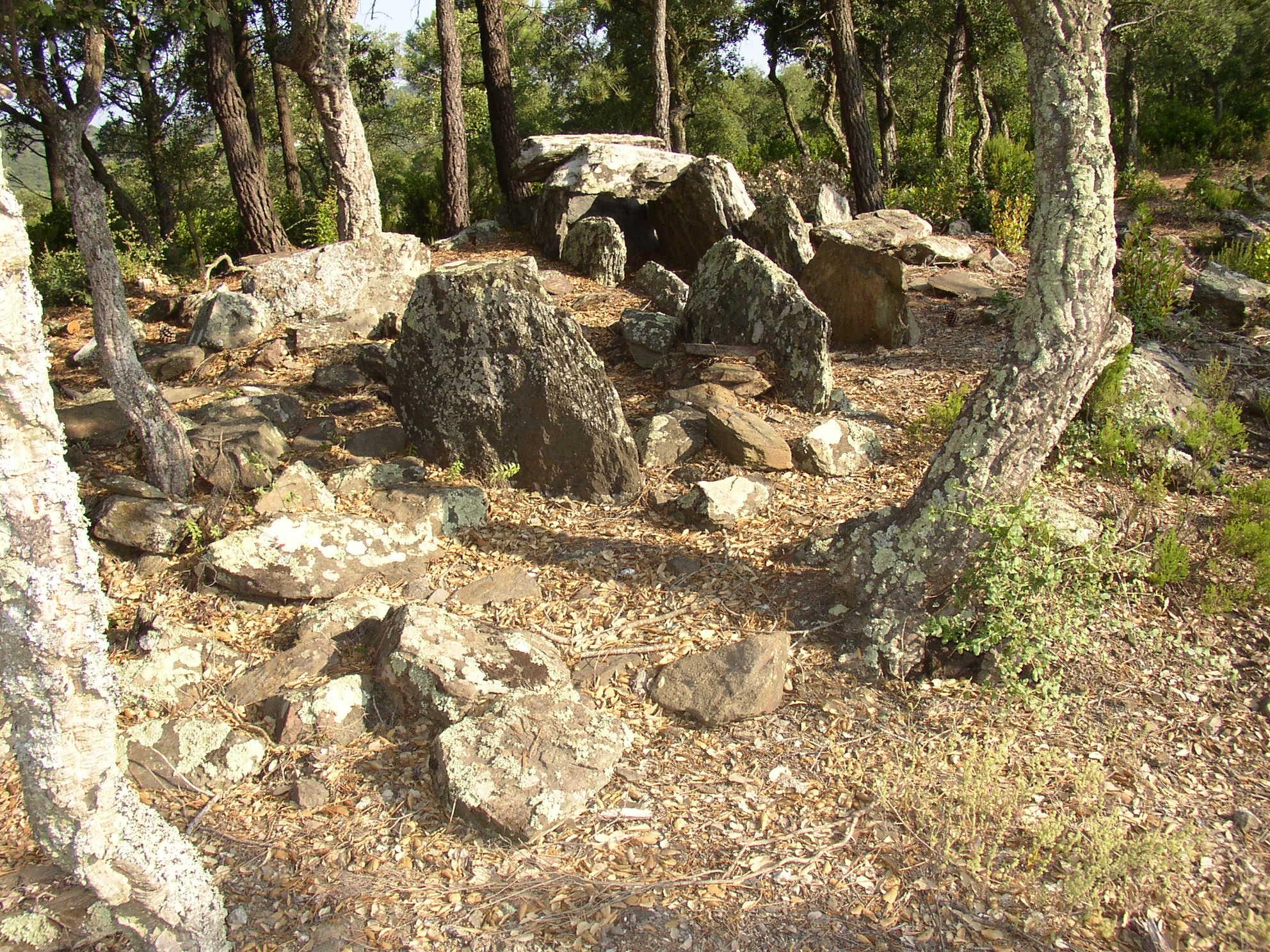 El massís de les Gavarres atresora un important patrimoni megalític. La zona de Fitor és una de les que ostenta més concentració d'aquests elements. A la imatge és veu el dolmen del Mas Estanyet, en el qual si observa l'entrada, el corredor d'accés i la cambra funerària al fons. Aquesta es composa per unes lloses que la delimitant-la i unes altres que la cobreixen. Al voltant d'aquesta estructura també és visible el cromlech, un cinturó de pedres que aguantava el túmul de terra que tapava l'estructura de pedra. El que veiem avui dia amb la imatge hem d'imaginar que s'enterrava.