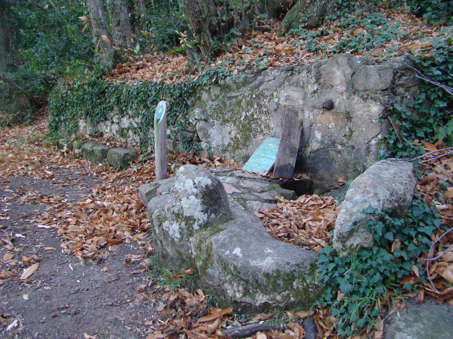 La font de la Castanyeda compta amb un broc que raja intermitentment en èpoques de pluja. Surt del perfil del camí i compta amb una construcció de pedra i morter. El broc és un tub petit de ferro. I l'aigua cau en un bassal construït també amb pedra. Destaca dues pedres grosses col·locades davant de la font a mode de protecció. Es troba al municipi de Santa Cristina d'Aro.