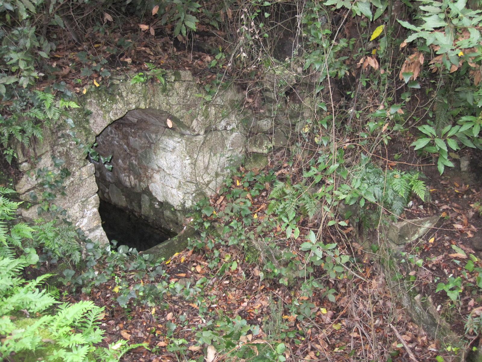 La font del Mas Ragolta és del tipus biot. No veiem un broc d'aigua sinó un clot excavat a la roca i una petita caseta construïda amb volta de pedra i morter. La font pertany al mas Ragolta situat a Cruïlles, Monells i Sant Sadurní de l'Heura.