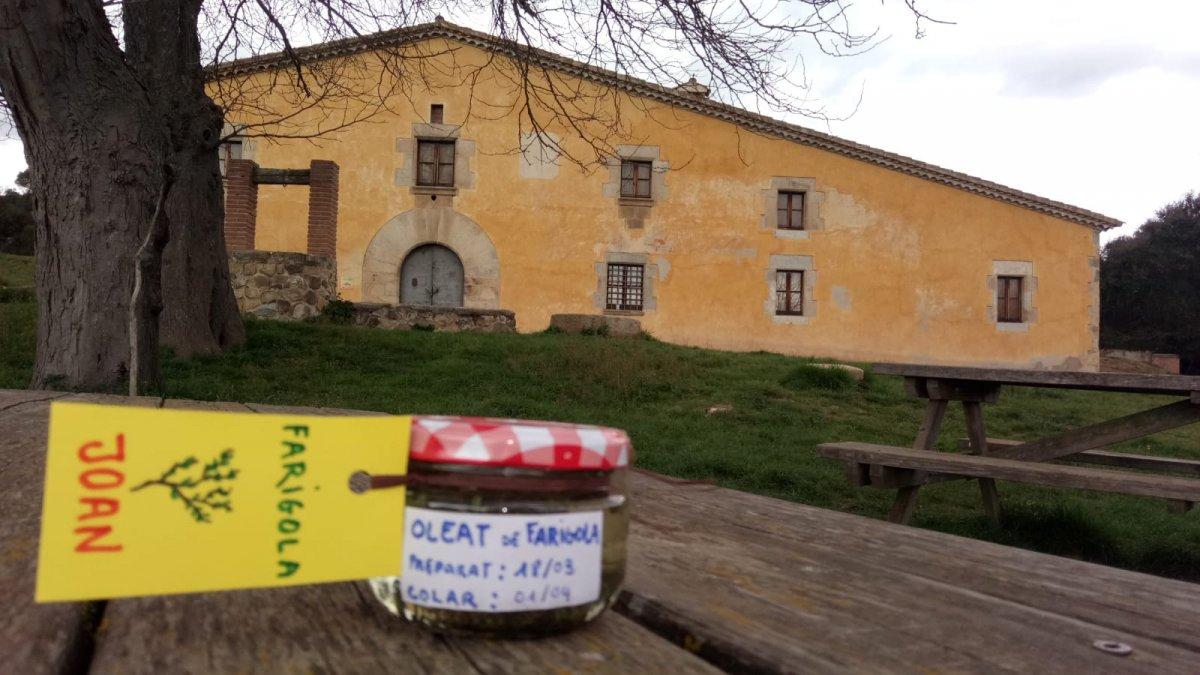 Activitats a Can Vilallonga