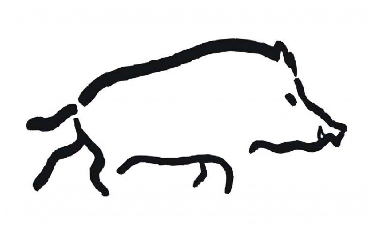 Dibuix d'un senglar