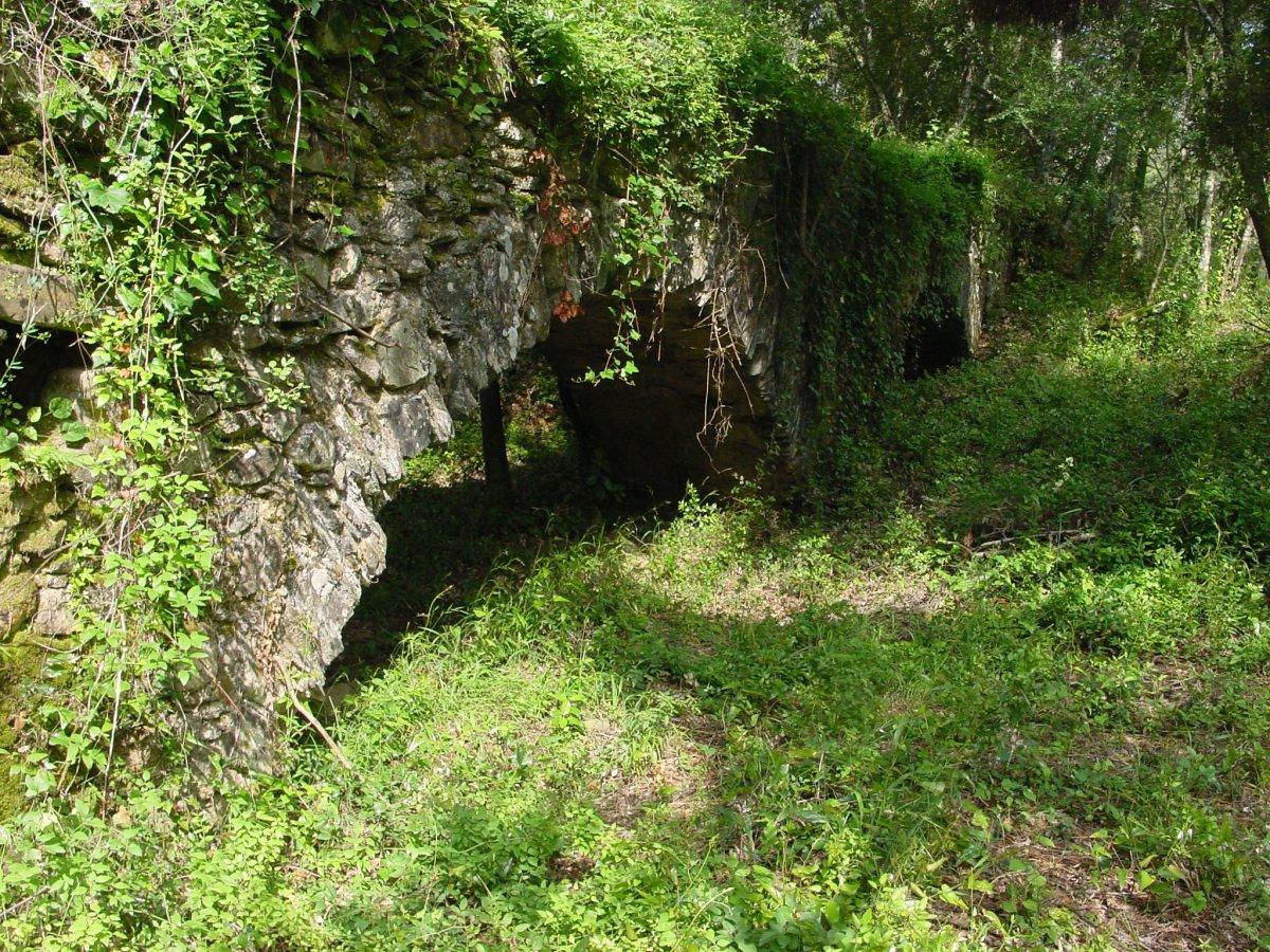 Restes de l'aqüeducte del molí d'en Frigola